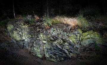 Sporen auf Harzer Gesteinsformation van Dirk Bartschat