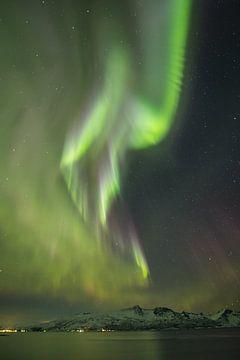 Nordlichter über den Fjorden von Norwegen von Marco Verstraaten