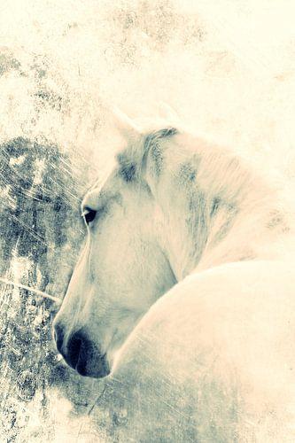 WHITE HORSE - ORIGINAL