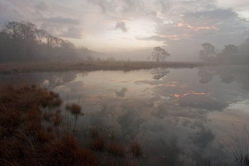 Het Kootwijkerveen bij zonsopkomst von Johannes Klapwijk