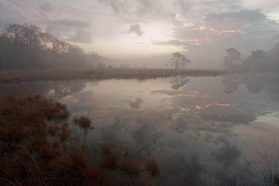 Het Kootwijkerveen bij zonsopkomst van Johannes Klapwijk