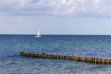 Blick auf den Strand an der Ostsee bei Kühlungsborn von Reiner Conrad