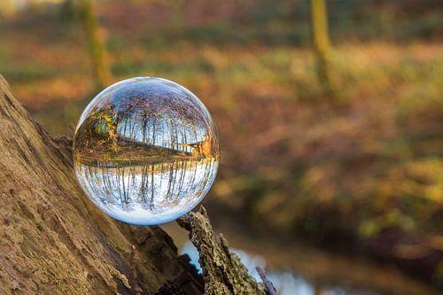 Door een glazen bal #6