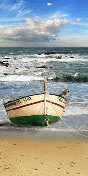De vissersboot op het strand van Monika Jüngling