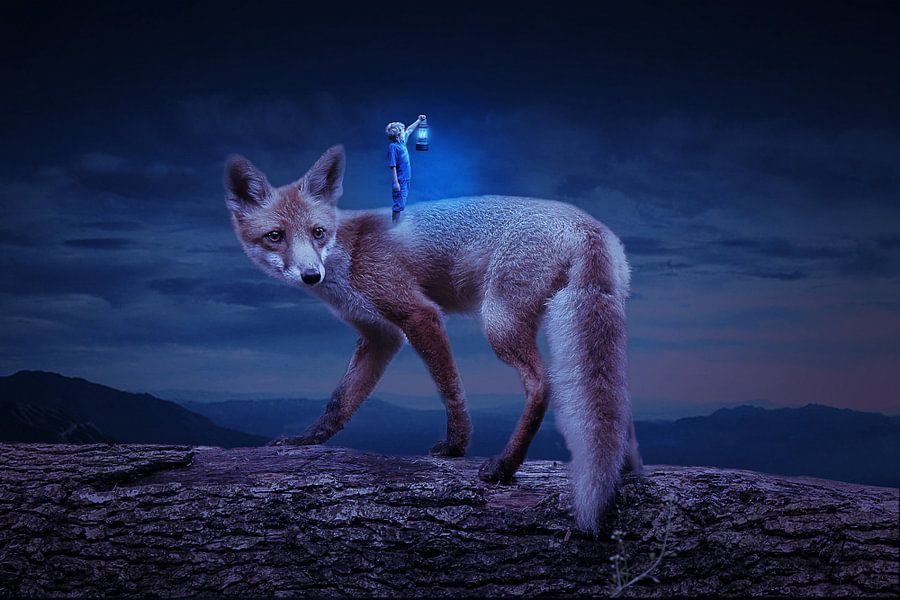 The Fox van Ellen Novara-da Lima