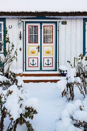 Door of a building in winter time