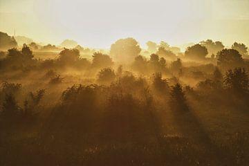 Mysterieuze zonsopkomst boven de uiterwaarden van Patrick Verhoef