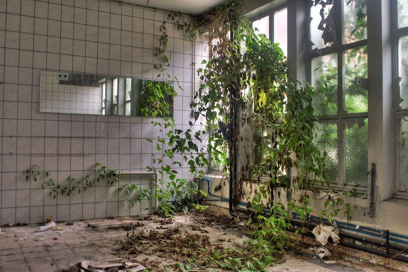 De natuur neemt het terug over van Tim Vlielander