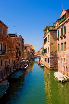 Venetia van