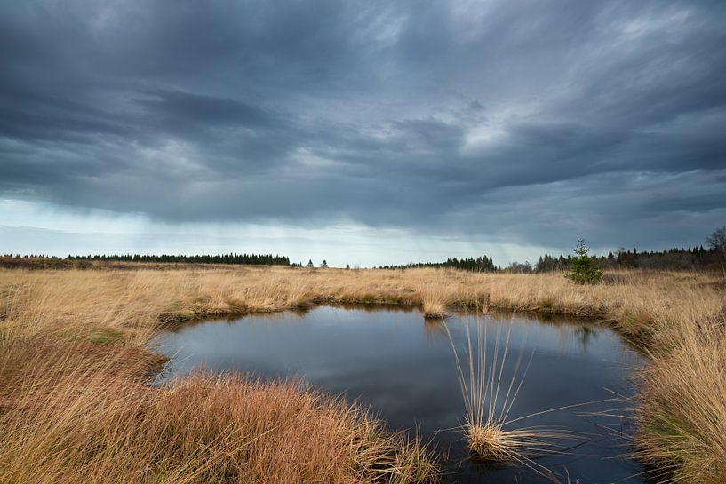 Dark Clouds van Rob Christiaans