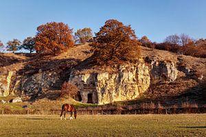 Herbst in Bemelen von Rob Boon
