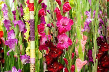 prachtige Gladiolen setting von Patricia Verbruggen