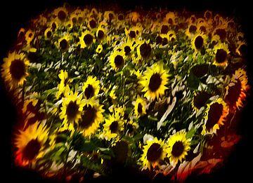 Sunflowers experience van Fons Bitter