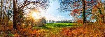Landschaft im Herbst von Günter Albers