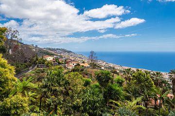 Blick auf Funchal auf der Insel Madeira von Rico Ködder