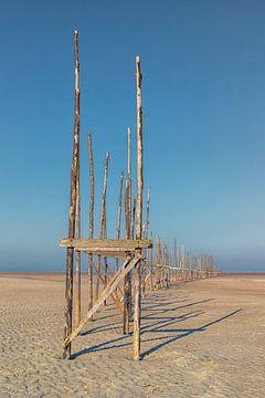 Vlieland staketsels op de Vliehorst van Marly De Kok