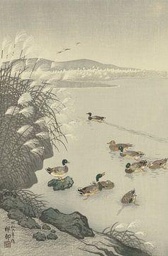 Enten im Wasser des Ohara Koson