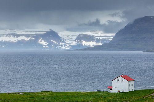 Uitzicht op de westfjorden van IJsland van