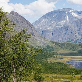 Groot panorama van de Besseggen bergkam  in NP Jotunheimen, Oppland, Noorwegen van Martin Stevens