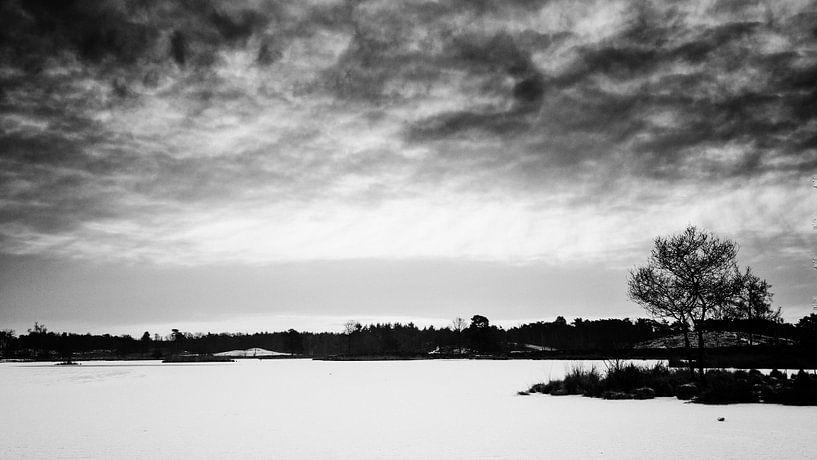 Winter in de Overasseltse en Hatertse Vennen. (zwart/wit) van Lex Schulte