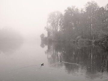 River In Mist von Lena Weisbek