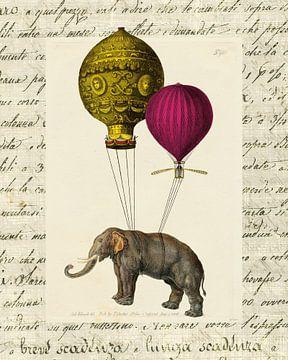 Elephant Ride II V2, Sue Schlabach van Wild Apple