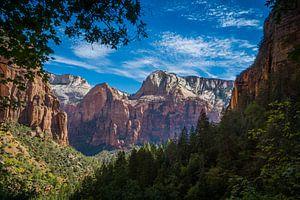 Doorkijkje in Zion nationaal park in Utah Amerika van Marja Spiering