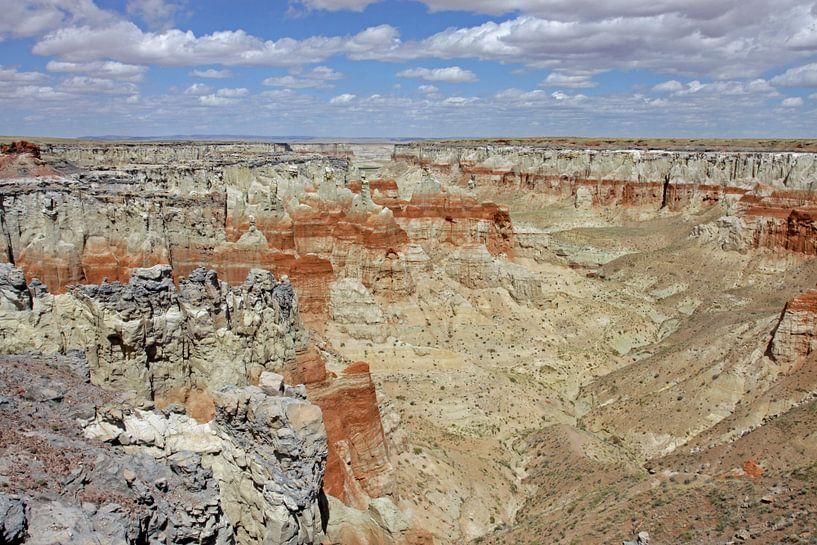 Coalmine Canyon van Antwan Janssen