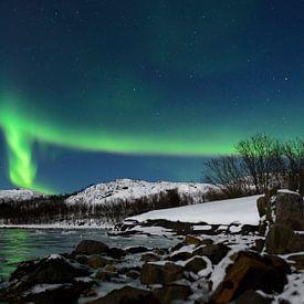 Aurore boréale dans le ciel nocturne de l'île de Senja, au nord de la Norvège sur Sjoerd van der Wal