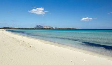 Paradijs, de kust van Sardinië van Jolene van den Berg