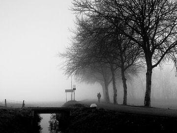 Wandelaar in de mist van Robert Smink