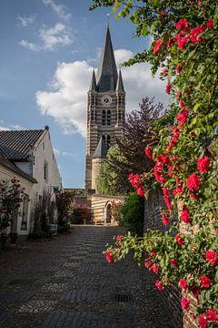 De kerk in Thorn met rozen van Manuuu S