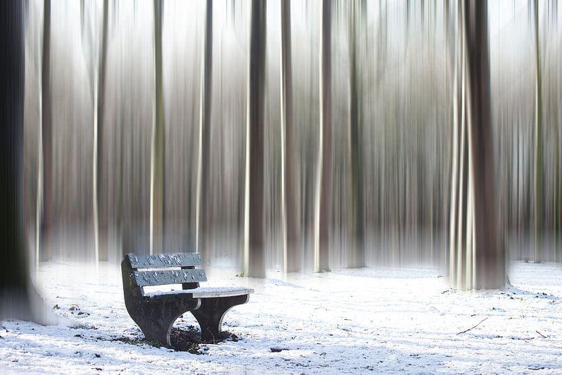 Winters bankje van Ina van Lambalgen