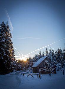 Winterse ochtend van