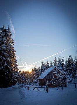 Winterse ochtend sur