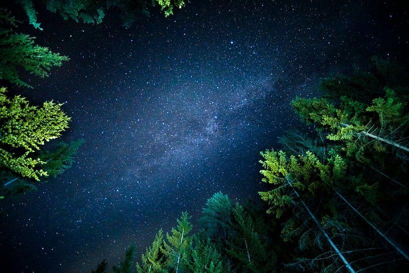 Sternenhimmel in Südkärnten von Stephan Zaun