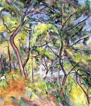 Paul Cézanne, Unterholz - 1894 von Atelier Liesjes
