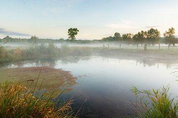 Sonnenaufgang über der gemeneweidebeek von Mister Moret Photography
