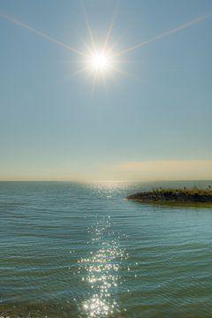 De pier van de haven van Laaxum in Friesland in de zon von Harrie Muis