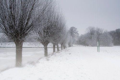 Nederlands winter landschap van Eus Driessen