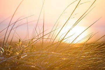 Zonsondergang strand sur Yajie Wang-Campagne