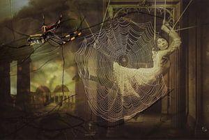 Spider's Web. van Rudy en Gisela Schlechter