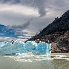 Gletsjer Grey in Patagonia, Chili van Trudy van der Werf