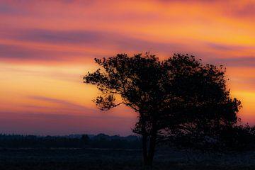Landschaft_02 von Johan Honders