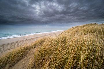 De duinen van Karin de Bruin