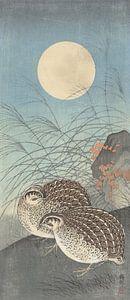 Twee kwartels bij volle maan van Ohara Koson