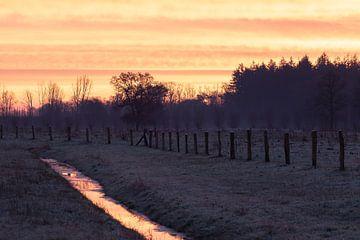 ruisseau dans un paysage hivernal sur Tania Perneel