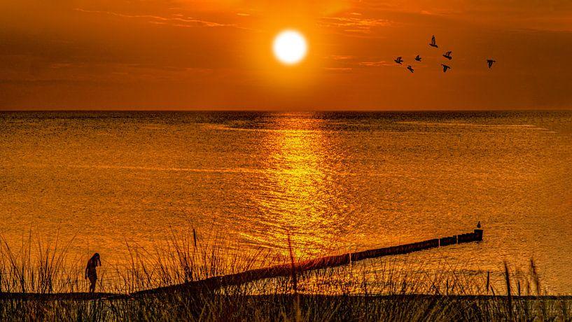 Oostzee 1 van Johnny Flash