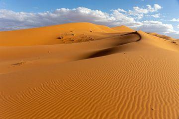 Een Landschap van Zandduinen bij Zonsopgang, Afrika van Tjeerd Kruse
