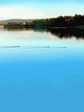 Alle meine Enten schwimmen auf dem See von Dirk H. Wendt
